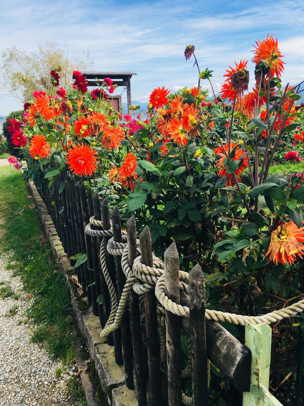 Garten Fraueninsel Chiemsee