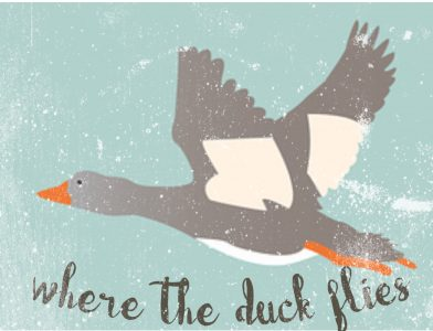 Where The Duck Flies