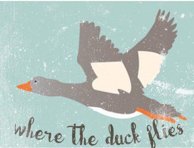Where The Duck Flies